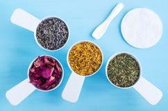 有干燥万寿菊、淡紫色、荷兰芹和狗玫瑰色花的塑料瓢 图库摄影