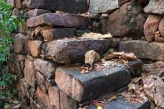 有干燥下落的叶子的石台阶对此 库存图片