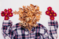 有干燥叶子和红色花的格子花呢上衣在一白色backgroun 免版税图库摄影