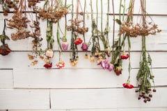 有干燥花的装饰的墙壁 免版税库存图片