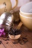 有干燥茶和茶具堆的木匙子  库存图片