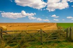 有干草捆和美丽的蓝色多云天空的五颜六色的黄色和绿色草甸 一个木门立场在干草领域前关闭了 库存照片