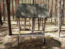 有干草的饲槽野生动物的在夏天森林里 库存照片