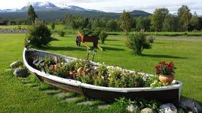 有庄严不同的花的美丽的老木小船花圃有多雪的山背景 免版税库存照片