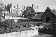 有庭院的克赖斯特切奇大教堂 免版税库存图片