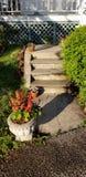 有庭院的石道路 免版税库存图片