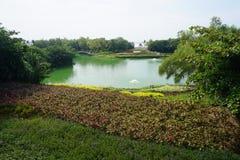 有庭院的绿色湖 免版税图库摄影