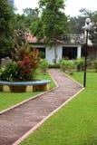 有庭院的自然道路 免版税库存照片