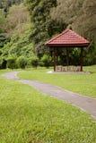 有庭院的自然道路 库存照片