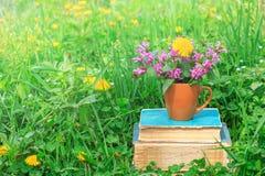 有开花植物的陶瓷杯堆的在清洁的旧书与一棵绿色三叶草 免版税库存图片
