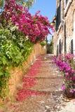 有开花的九重葛花的浪漫狭窄的街道 免版税库存照片