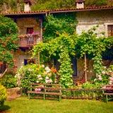 有开花的农村房子在俏丽的村庄庭院里开花 库存照片