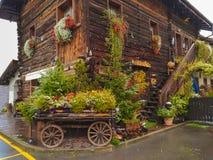 有开花的无盖货车的典型的高山木房子在利维尼奥的中心 免版税库存照片