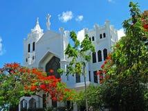 有开花的poinciana的基韦斯特岛教会 免版税库存照片