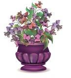 有异乎寻常的紫罗兰色花的花瓶 免版税图库摄影