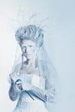 有异常的构成的雪女王/王后 免版税图库摄影