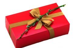 有弓和杨柳的红色礼物盒 库存图片