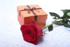 有弓的礼物盒和在白色背景上升了 装饰 免版税库存照片