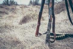 有弹药传送带的狩猎猎枪在干草当狩猎背景 图库摄影