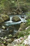 有强有力的水流量的山河 图库摄影