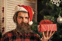 有当前箱子的圣诞老人人在圣诞树 免版税图库摄影