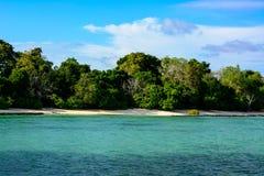 有当地植被和一个小海滩的热带海岛 库存照片