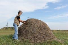 有形成领域的胡子的人一个干草堆 库存图片
