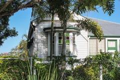 有彩色玻璃凸出的三面窗和棕榈树的典型的昆士兰生长在有房子的篱芭的房子和藤小山的在背景中 免版税库存照片