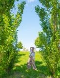 有很多辅助部件的和连衫裤的享受夏时的美丽的boho样式妇女在公园 库存照片