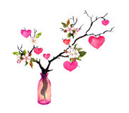 有心脏的枝杈,春天开花在玻璃瓶开花 情人节或婚礼的水彩 免版税库存图片