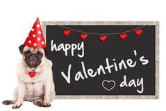 有心脏的Loevel逗人喜爱的哈巴狗小狗佩带的党帽子,在黑板标志旁边与文本愉快的华伦泰` s天,坐白色 库存照片