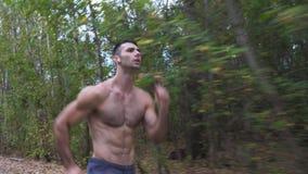 有快速地冲刺沿足迹的无线耳机的英俊的肌肉人靠近森林早期的秋天 运动人 股票录像