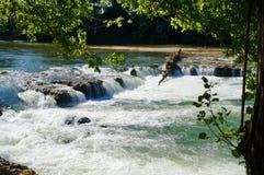 有急流和树的流动的河在一个晴天 库存图片