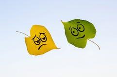 有愉快和哀伤的面孔的图片的绿色和黄色叶子 图库摄影