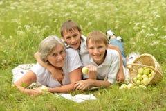 有愉快的家庭一顿野餐在一个晴天 免版税库存图片