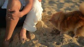 有愉快的年轻的夫妇乐趣户外和微笑 放置在海滩的美好的夫妇在晚上 ?? 股票视频