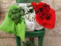 有意大利旗子的植物 免版税库存图片