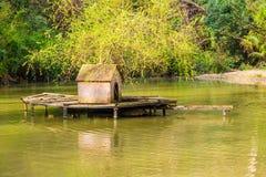 有房子的湖swawns的 图库摄影