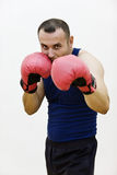 有手套的新拳击手 免版税图库摄影