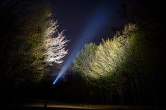 有手电的人在森林里 免版税库存图片