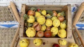 有手榴弹和柑橘的箱子 库存图片