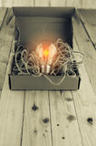 有打开的电灯泡的被打开的包装纸箱子 免版税库存图片
