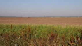 有拖拉机工作的农村农田土地,在早晨阳光下 影视素材