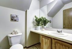 有拱顶式顶棚的白色卫生间 库存照片