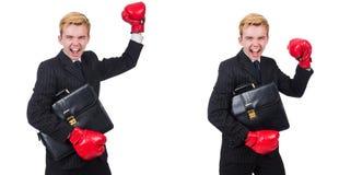 有拳击手套的年轻雇员在白色 库存图片