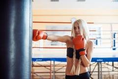 有拳击手套的俏丽的体育妇女 库存照片