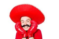 有拳击手手套的滑稽的墨西哥人 库存图片