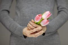 有拿着桃红色春天的完善的钉子艺术的妇女手开花郁金香,肉欲的演播室射击 库存图片
