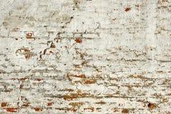 有损坏的和崩裂的白色膏药的红砖墙壁 免版税库存照片