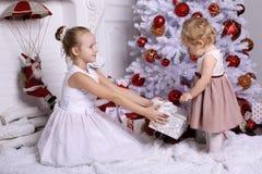 有摆在圣诞树旁边的金发的可爱的姐妹 免版税库存图片